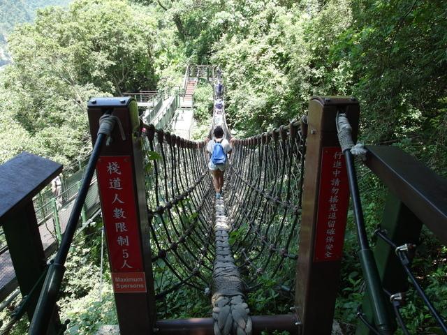 小錐麓步道 (33).JPG