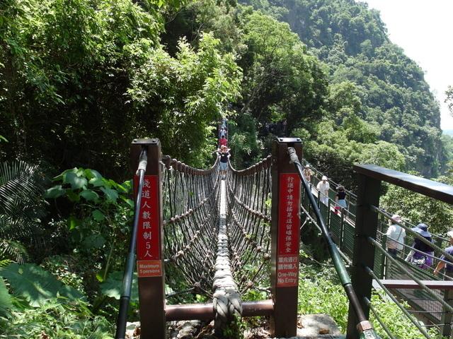 小錐麓步道 (36).JPG