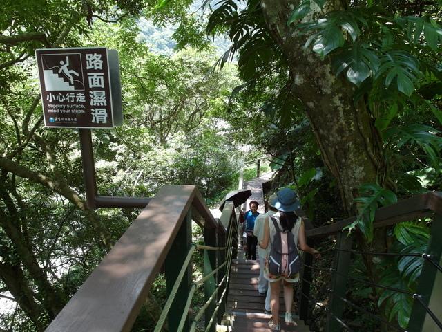 小錐麓步道 (39).JPG