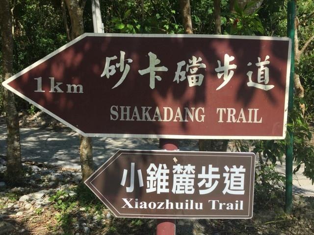 小錐麓步道 (41).JPG