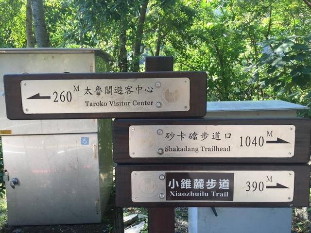 小錐麓步道 (43).JPG