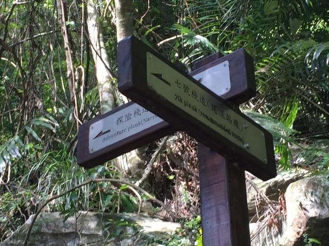 小錐麓步道 (49).JPG