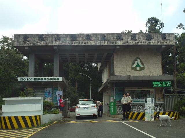 東眼山 (6).JPG