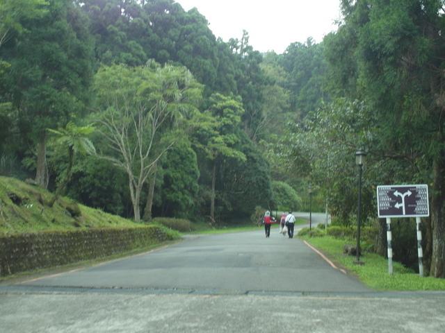 東眼山 (7).JPG