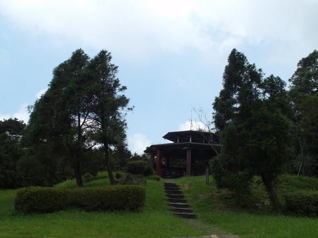 東眼山 (8).JPG