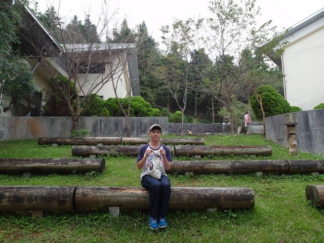 東眼山 (11).JPG