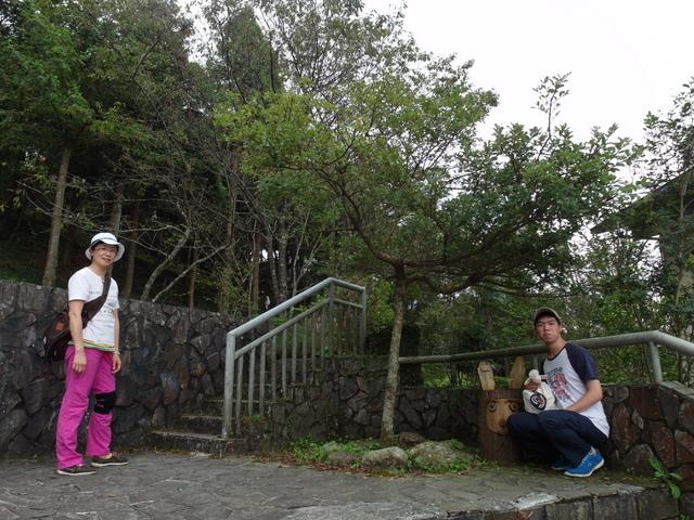 東眼山 (12).JPG
