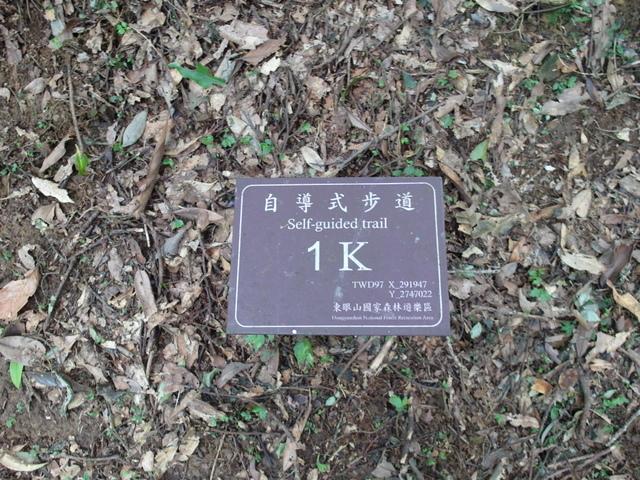 東眼山 (39).JPG
