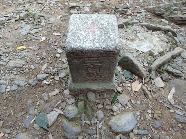東眼山 (55).JPG