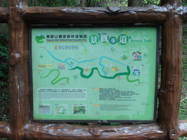 東眼山 (107).JPG