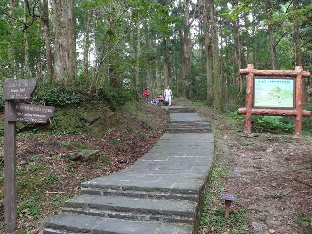 東眼山 (116).JPG