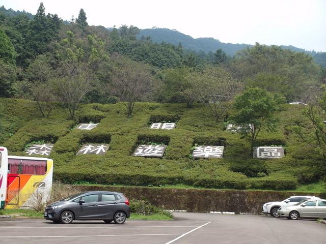 東眼山 (131).JPG