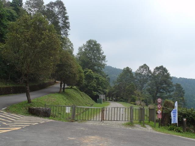 東眼山 (132).JPG