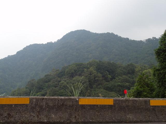 東眼山 (134).JPG