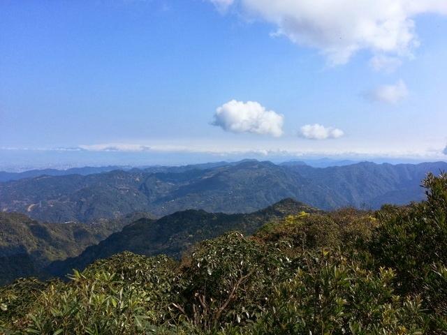東眼山 (210).jpg