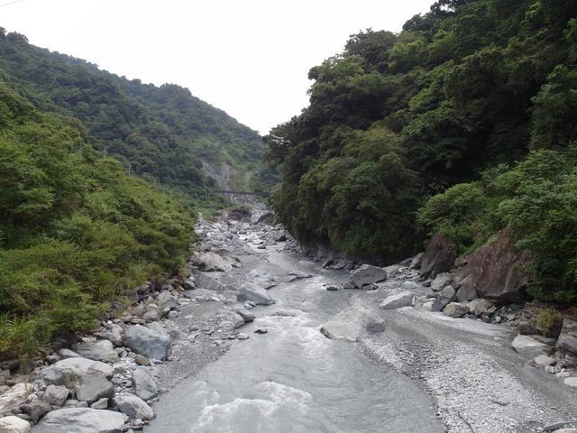 富源森林遊樂區 (56).JPG