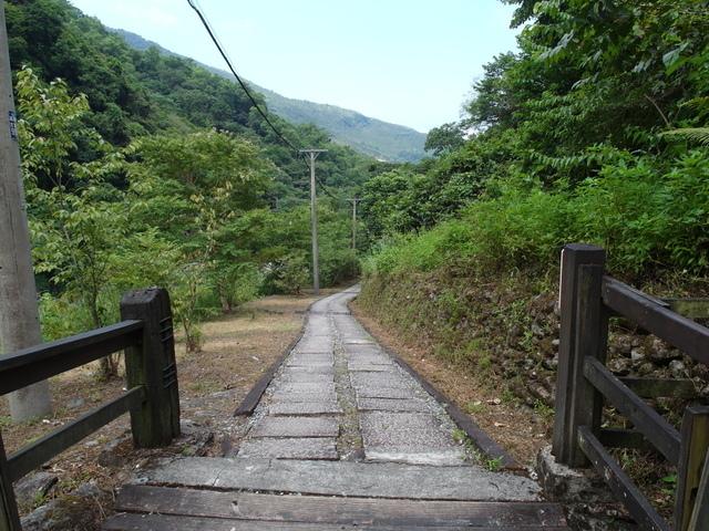 富源森林遊樂區 (61).JPG