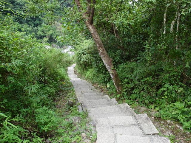 富源森林遊樂區 (64).JPG
