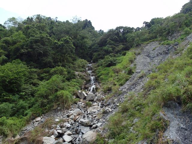 富源森林遊樂區 (73).JPG