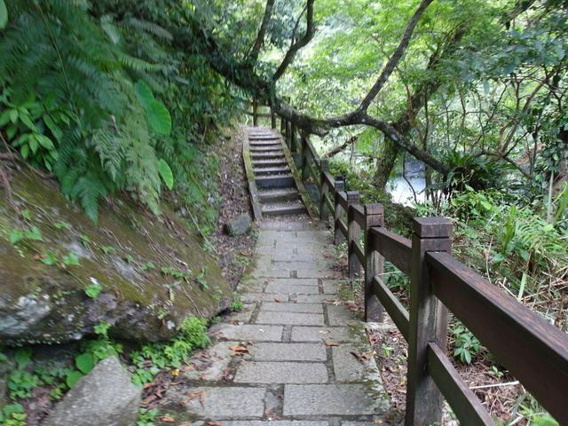 富源森林遊樂區 (83).JPG
