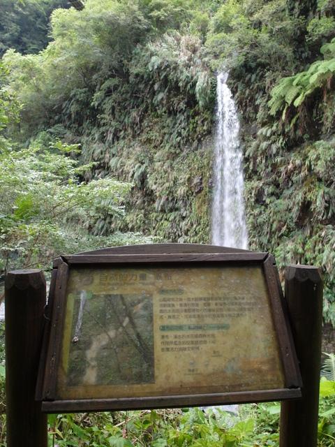 富源森林遊樂區 (98).JPG