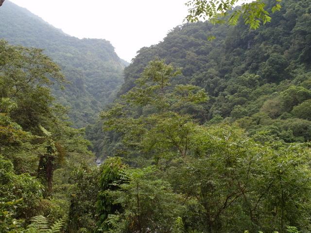 富源森林遊樂區 (107).JPG