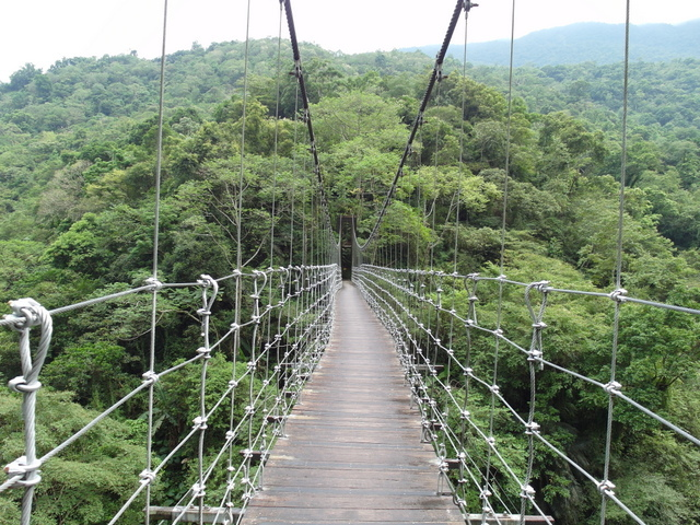 富源森林遊樂區 (113).JPG