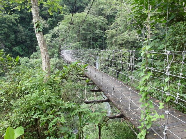 富源森林遊樂區 (129).JPG