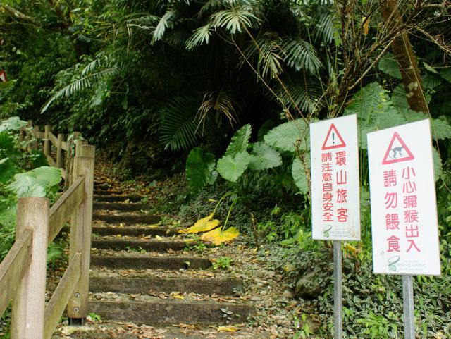 富源森林遊樂區 (140).JPG