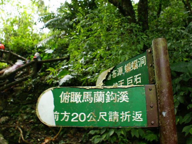富源森林遊樂區 (148).JPG
