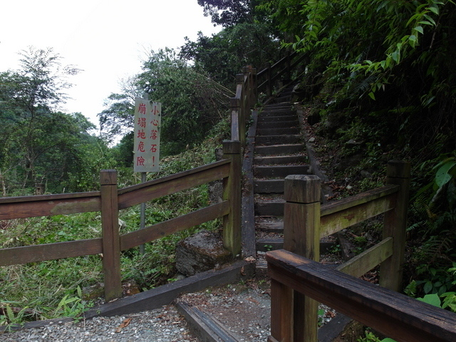 富源森林遊樂區 (165).JPG