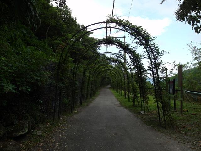 富源森林遊樂區 (183).JPG