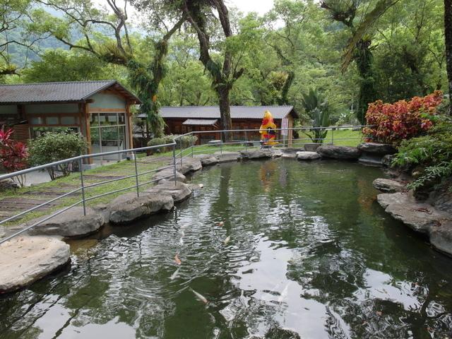 富源森林遊樂區 (193).JPG