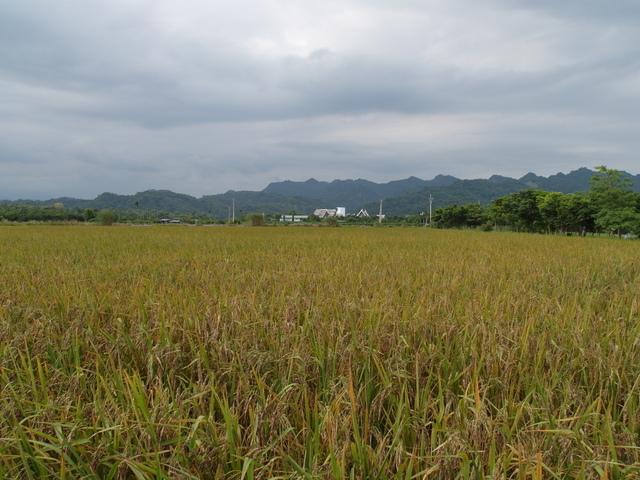 吉蒸牧場 (3).JPG