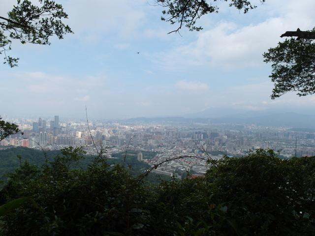 九五峰、四分里山 (57).JPG