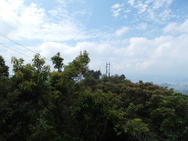 九五峰、四分里山 (72).JPG
