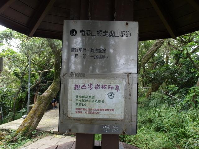 九五峰、四分里山 (70).JPG