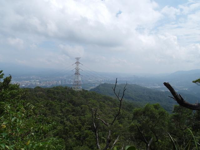 九五峰、四分里山 (82).JPG
