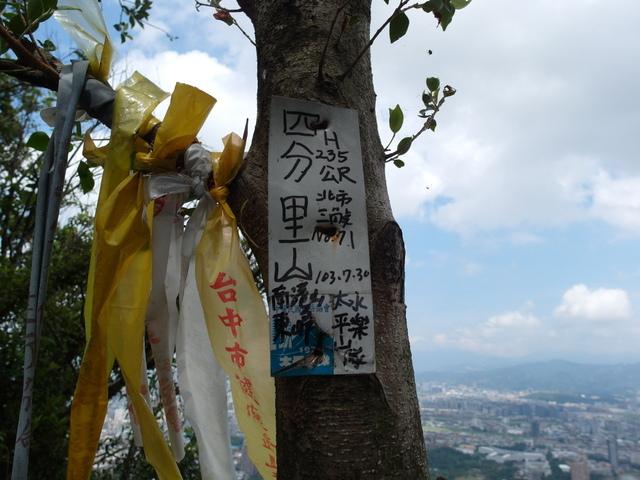 九五峰、四分里山 (110).JPG