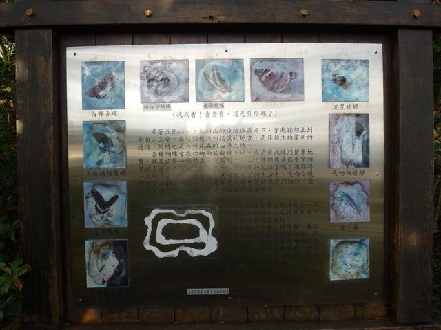 剪刀石山 (414).JPG