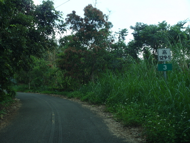 青山產業道路 (8).jpg