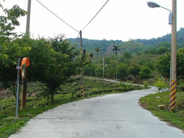 青山產業道路 (44).jpg