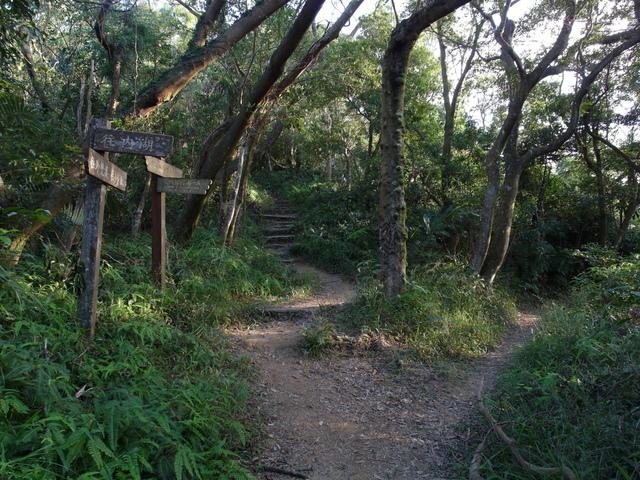 剪刀石山 (519).JPG