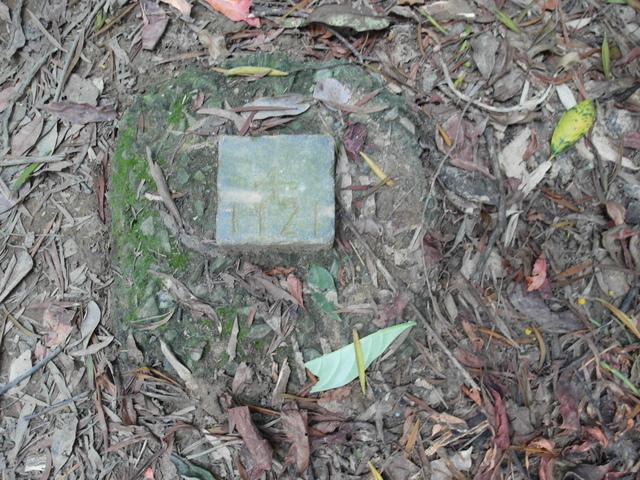 剪刀石山 (542).JPG