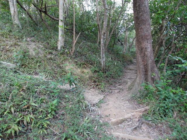 剪刀石山 (543).JPG
