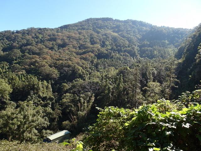 馬拉邦山 (20).JPG