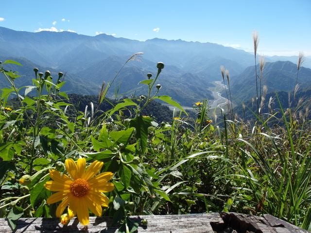馬拉邦山 (80).JPG