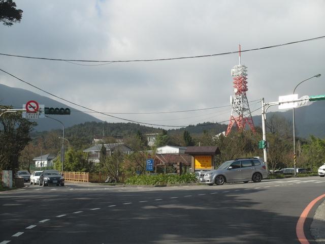 竹子湖  (1).JPG