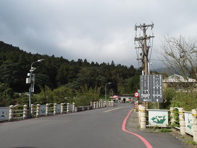 竹子湖  (3).JPG