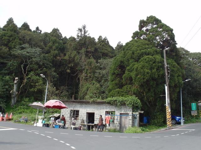竹子湖  (4).JPG